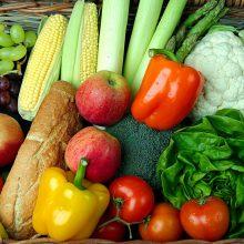 vegetarijansko_Voce i povrce